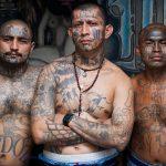 Descubre cómo 5 cárteles de EE.UU. controlan el tráfico de drogas