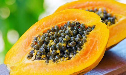 Semillas de papaya, la mejor solución natural para desintoxicar el hígado