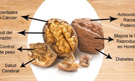 Comer nueces aumenta esperanza de vida y reduce riesgo de infarto